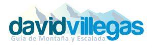 David Villegas logo