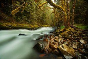Une Rivière Coule En Lui